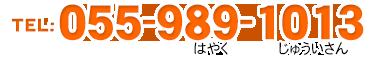 ながいずみ動物病院/usr/home/ae149cvy8s/html/nagaizumi-ah/wp-content